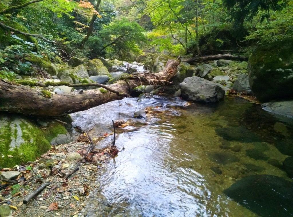 161029北川.jpg